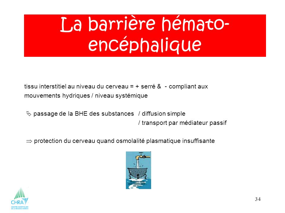 La barrière hémato-encéphalique