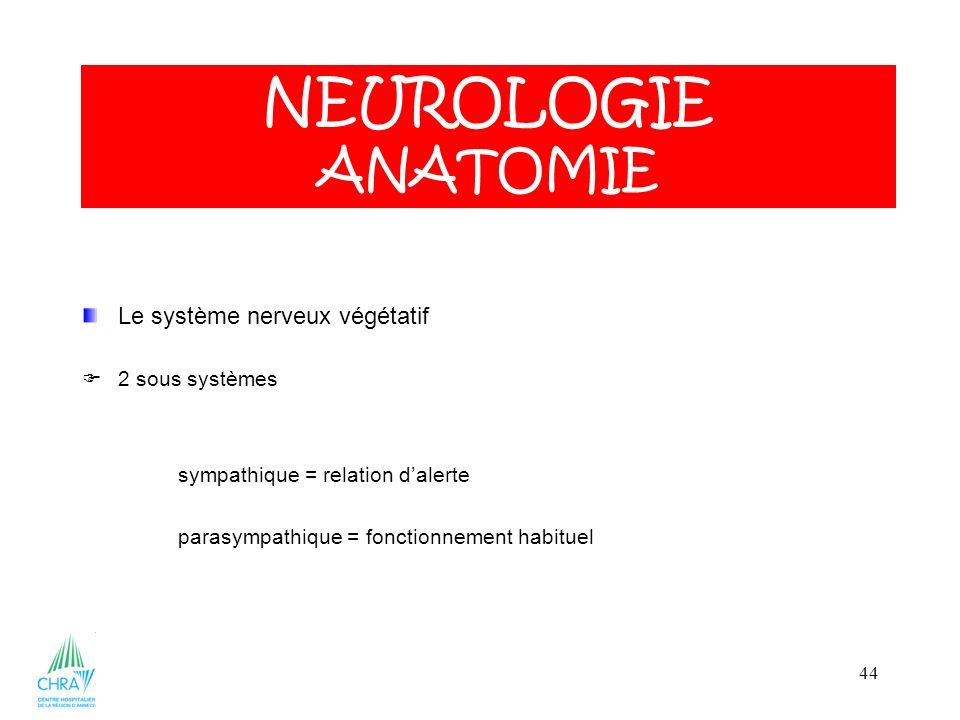 NEUROLOGIE ANATOMIE Le système nerveux végétatif 2 sous systèmes