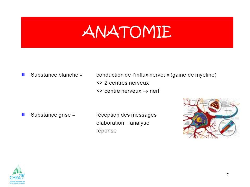 ANATOMIE ANATOMIE. Substance blanche = conduction de l'influx nerveux (gaine de myéline) <> 2 centres nerveux.