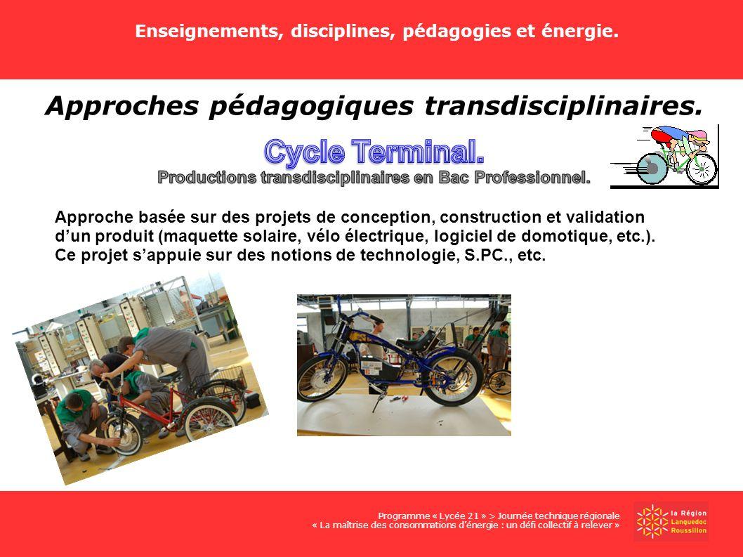 Cycle Terminal. Approches pédagogiques transdisciplinaires.