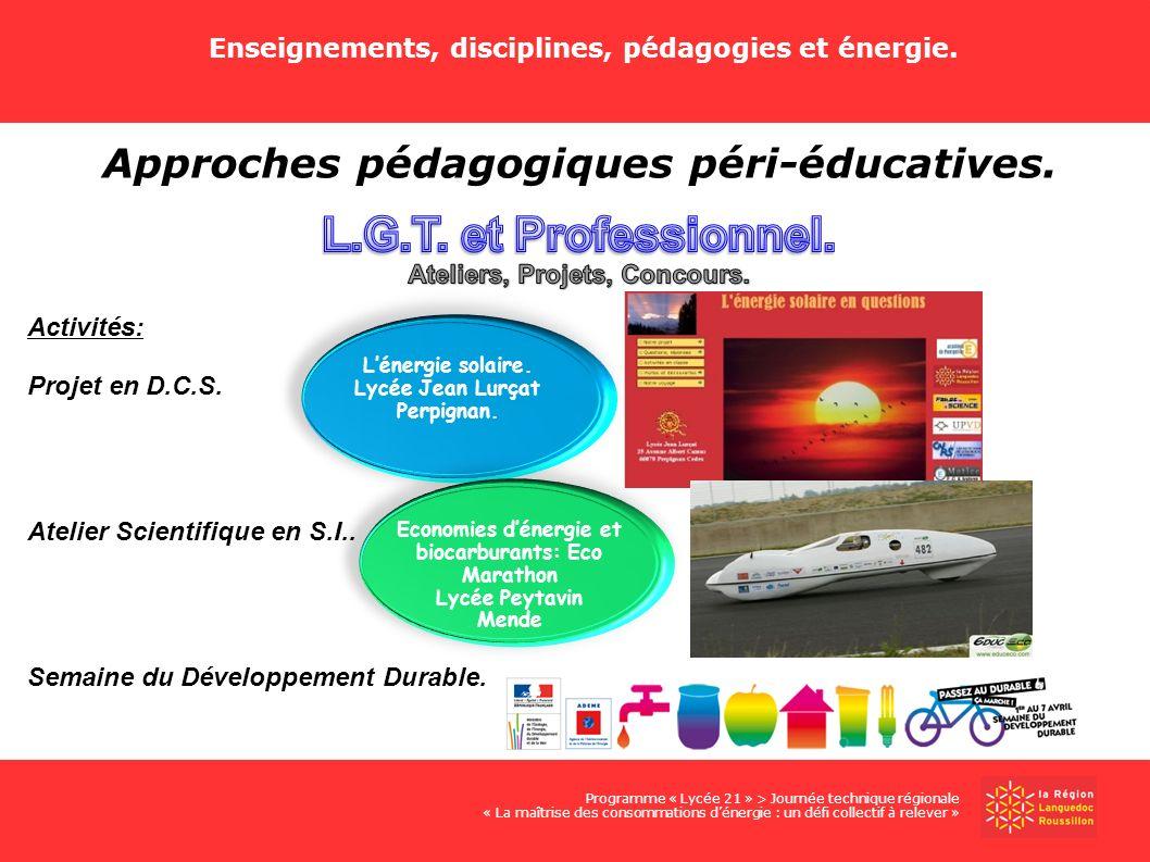 L.G.T. et Professionnel. Approches pédagogiques péri-éducatives.