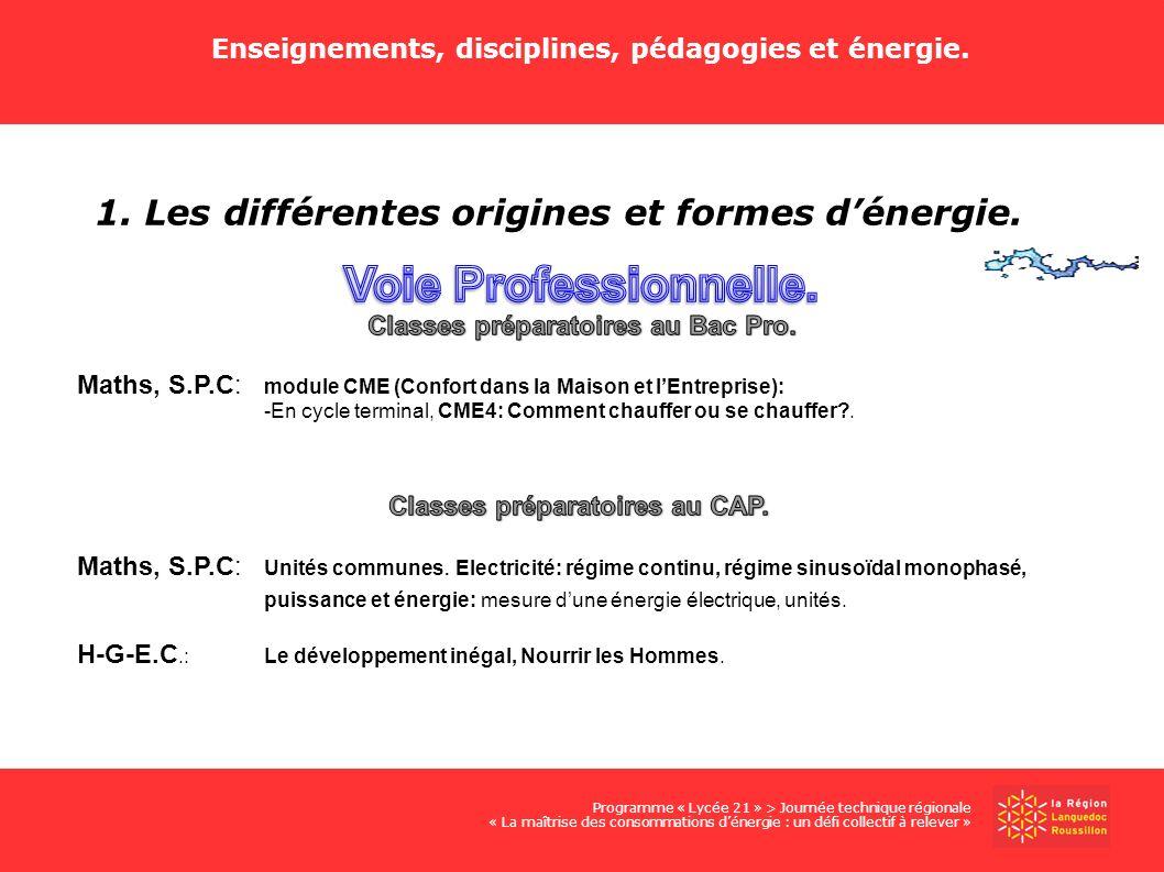 Voie Professionnelle. 1. Les différentes origines et formes d'énergie.