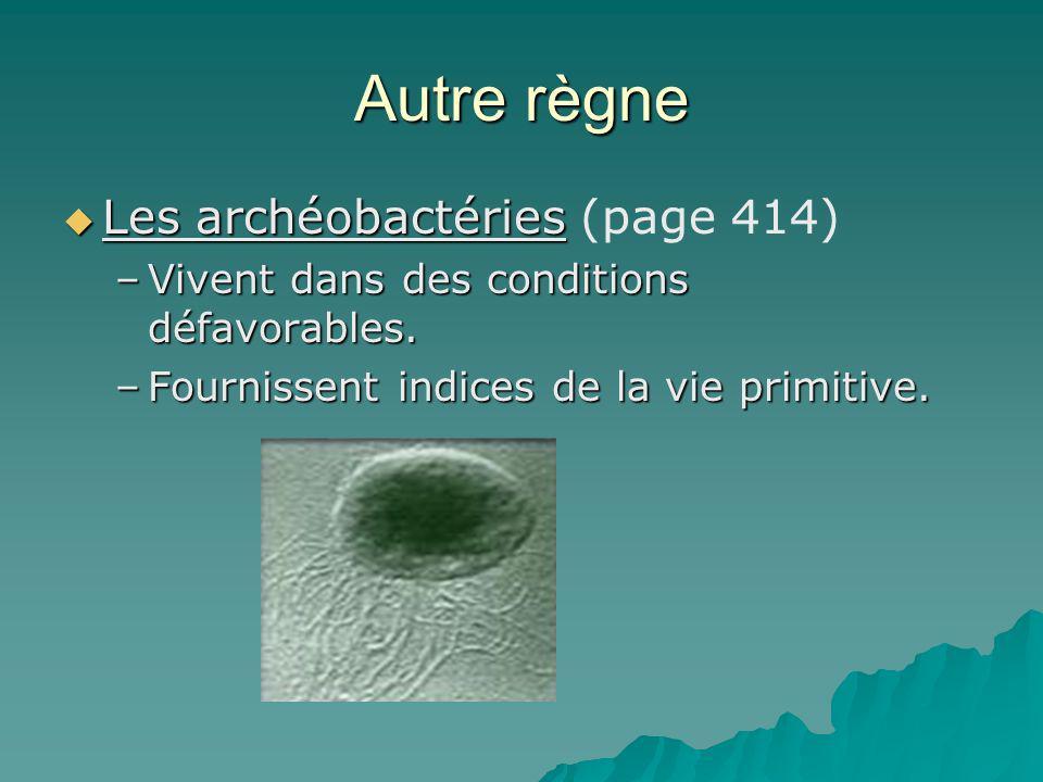 Autre règne Les archéobactéries (page 414)