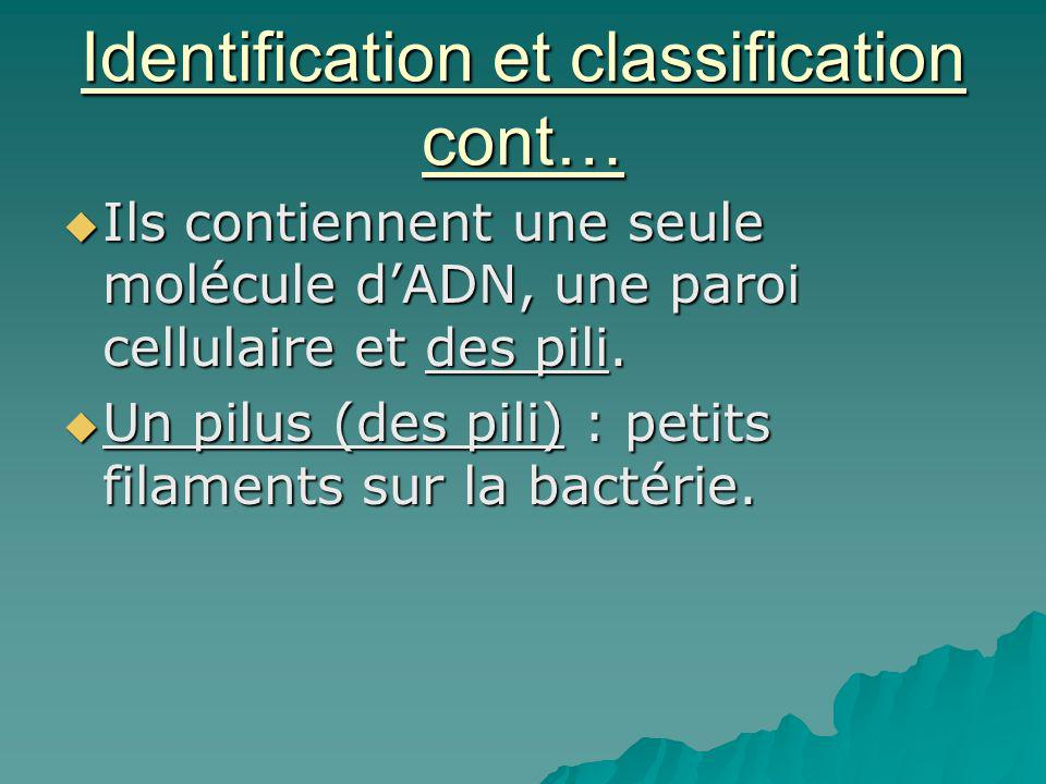 Identification et classification cont…