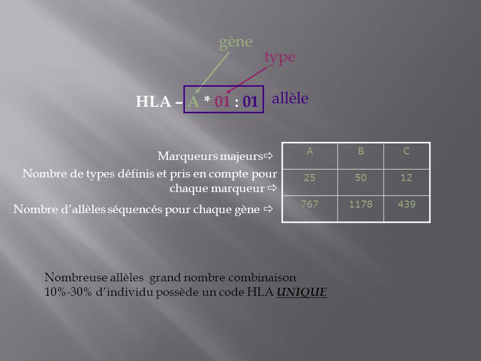 gène type allèle HLA – A * 01 : 01 Marqueurs majeurs