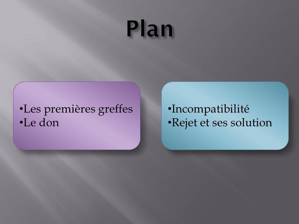 Plan Les problèmes des greffes et leurs solutions