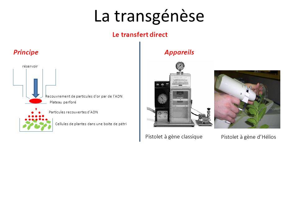La transgénèse Le transfert direct Principe Appareils v