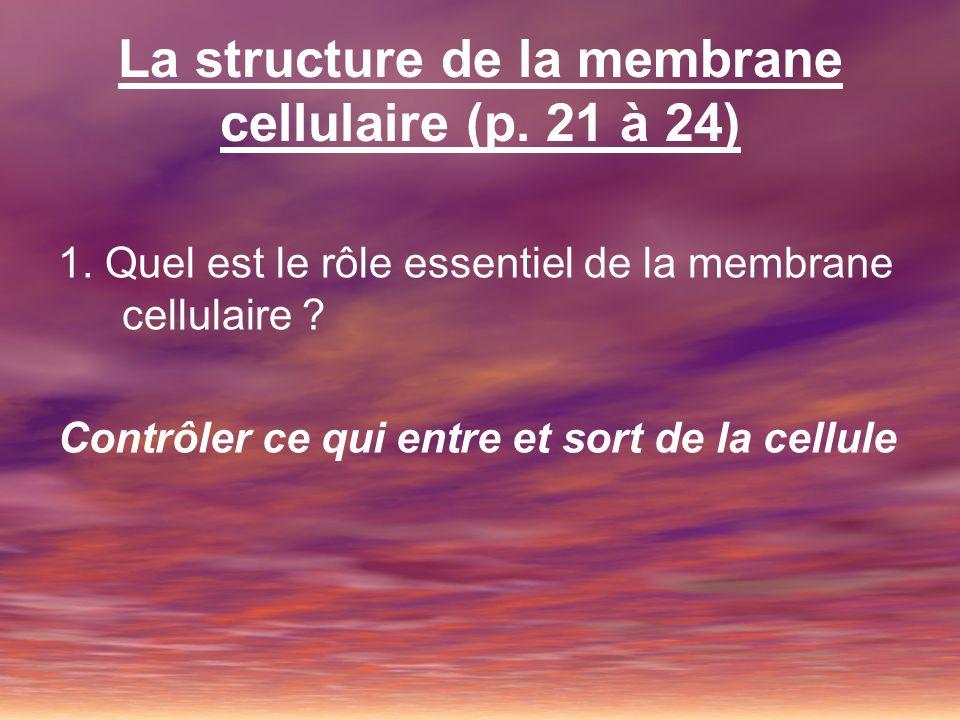 La structure de la membrane cellulaire (p. 21 à 24)