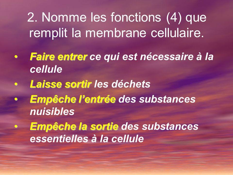 2. Nomme les fonctions (4) que remplit la membrane cellulaire.