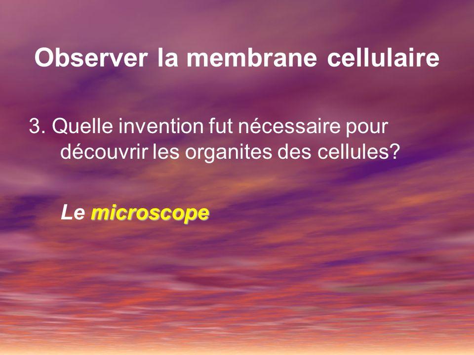 Observer la membrane cellulaire