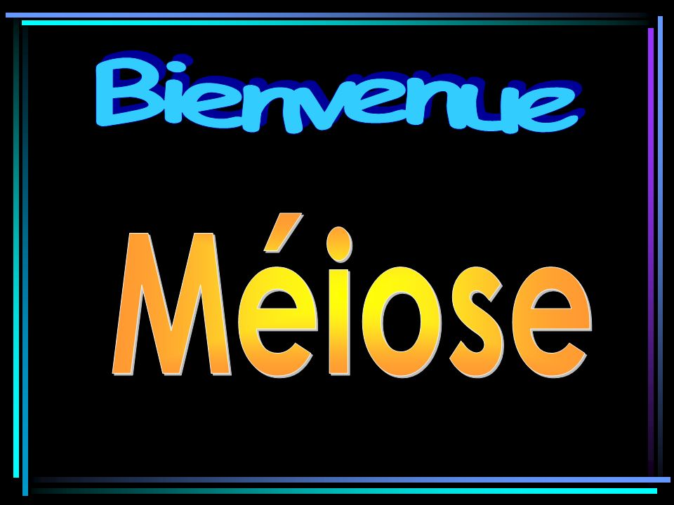 Bienvenue Méiose