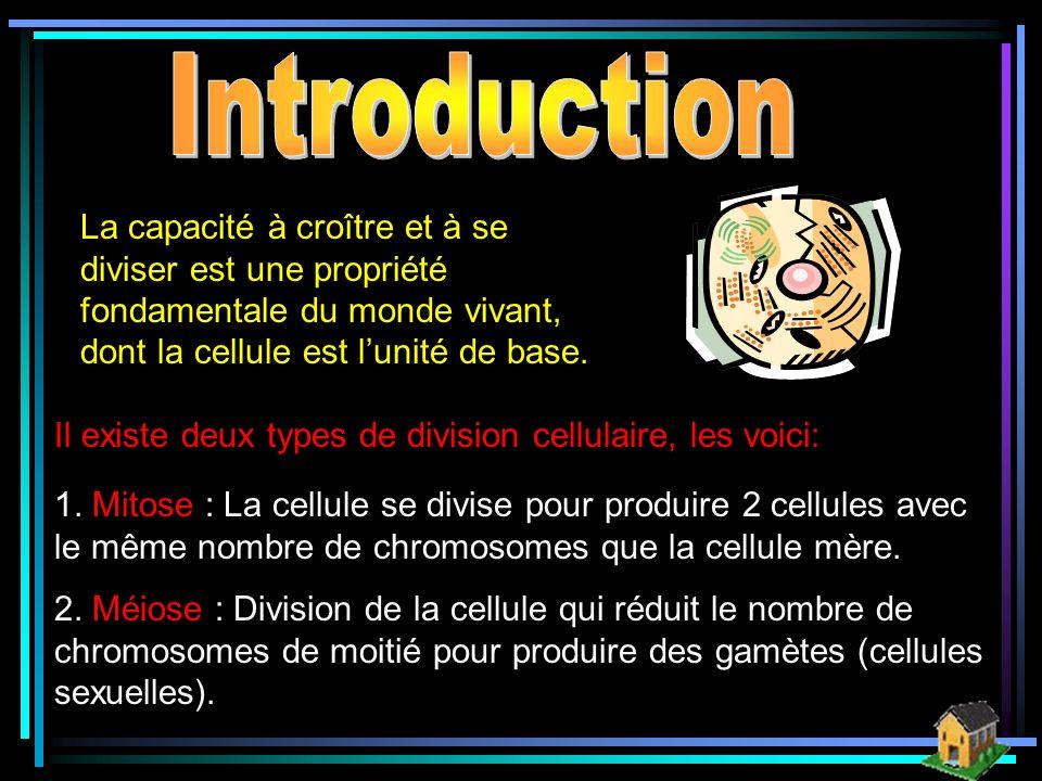 Introduction La capacité à croître et à se diviser est une propriété fondamentale du monde vivant, dont la cellule est l'unité de base.