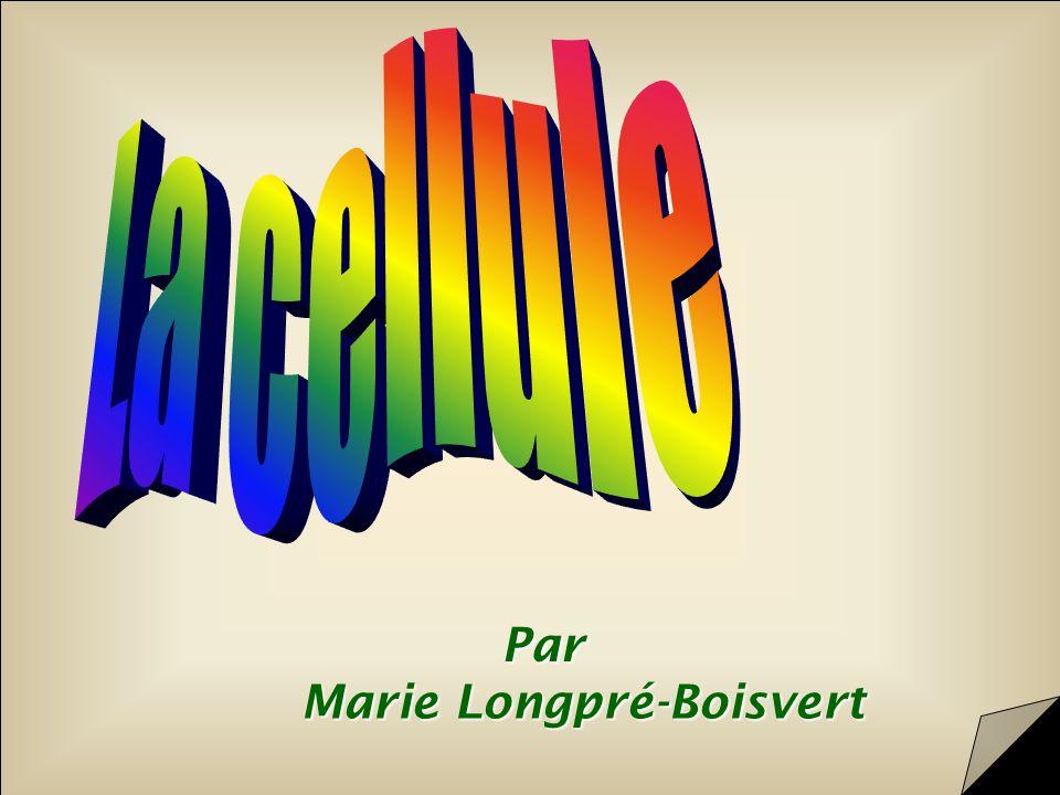 La cellule Par Marie Longpré-Boisvert