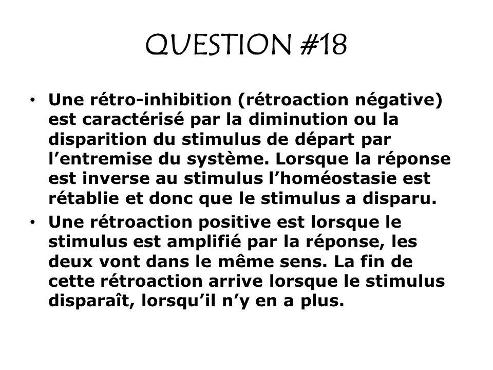 QUESTION #18
