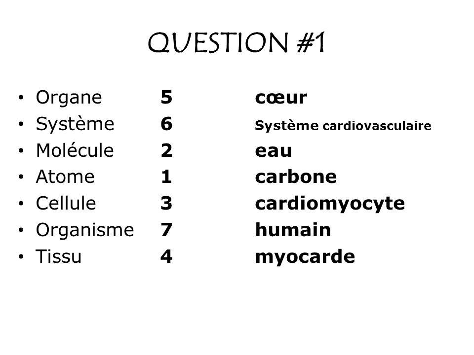 QUESTION #1 Organe 5 cœur Système 6 Système cardiovasculaire