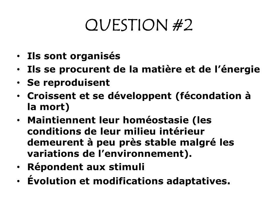 QUESTION #2 Ils sont organisés