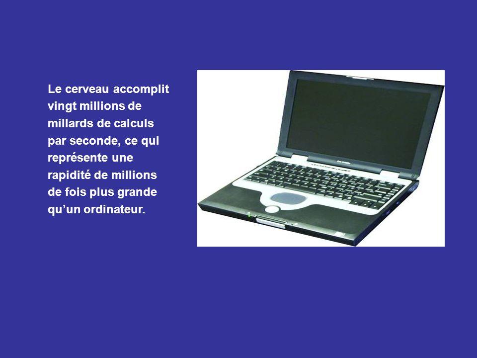 Le cerveau accomplit vingt millions de millards de calculs par seconde, ce qui représente une rapidité de millions de fois plus grande qu'un ordinateur.