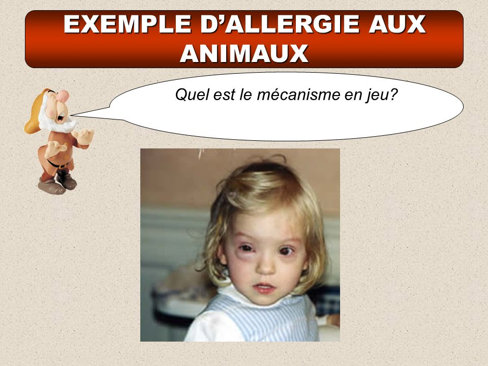 EXEMPLE D'ALLERGIE AUX ANIMAUX