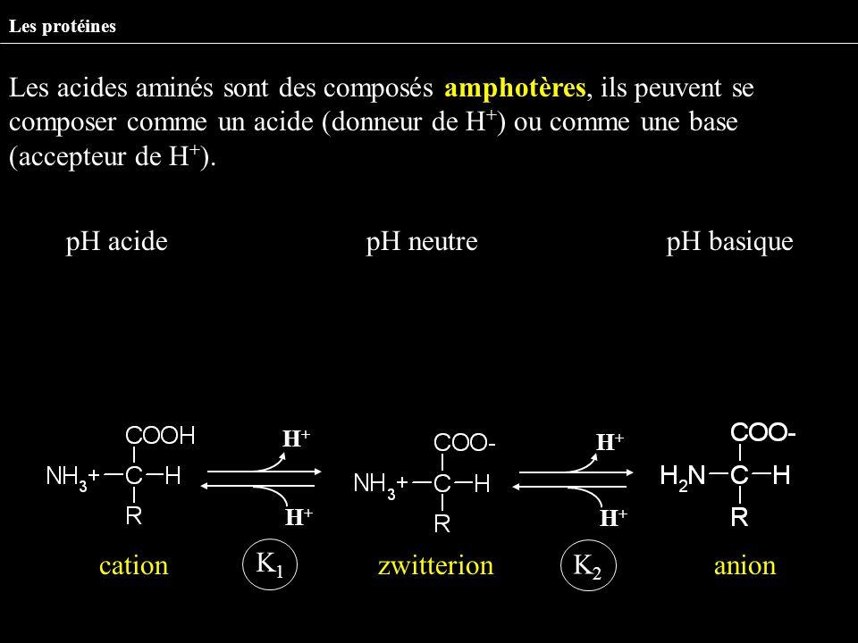 pH acide pH neutre pH basique