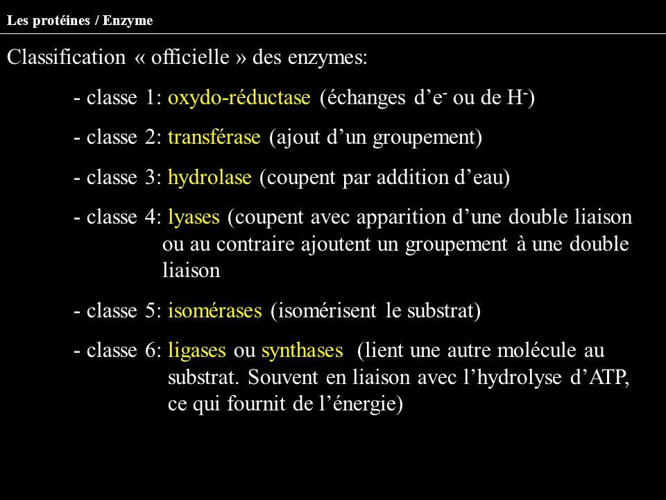 Classification « officielle » des enzymes: