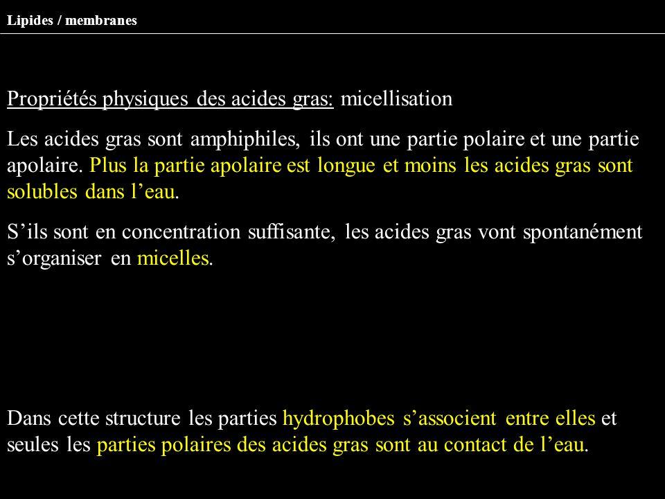 Propriétés physiques des acides gras: micellisation