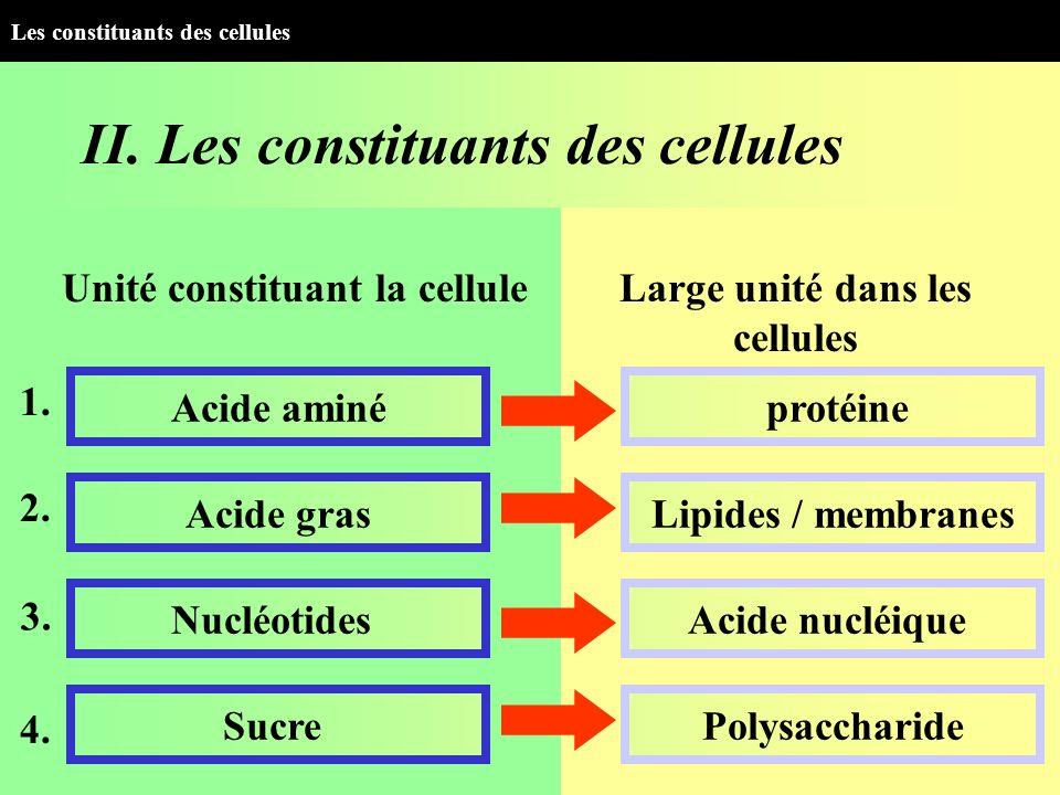 II. Les constituants des cellules