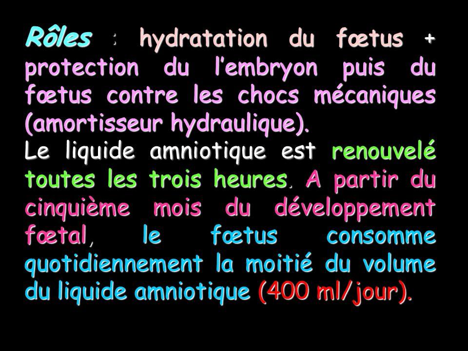 Rôles : hydratation du fœtus + protection du l'embryon puis du fœtus contre les chocs mécaniques (amortisseur hydraulique).