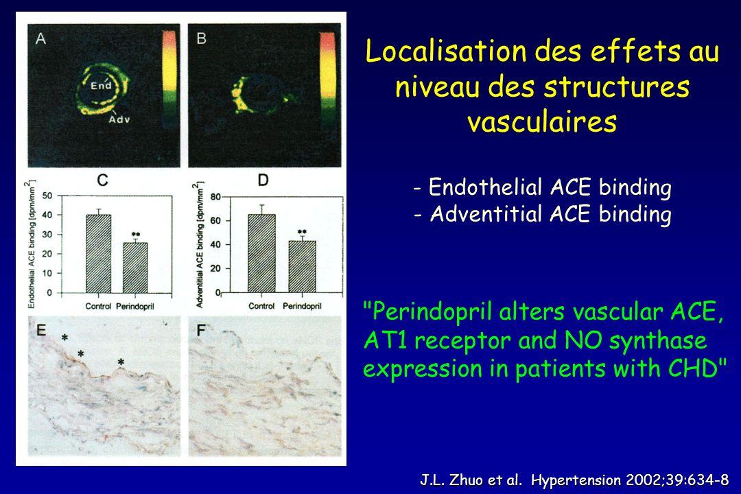 Localisation des effets au niveau des structures vasculaires
