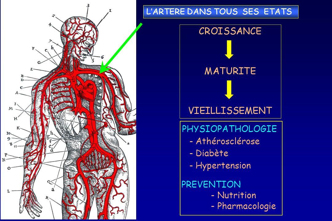 PHYSIOPATHOLOGIE - Athérosclérose Diabète Hypertension PREVENTION