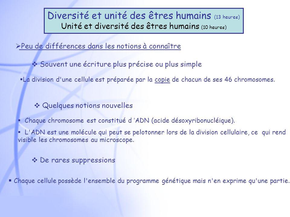 Diversité et unité des êtres humains (13 heures)