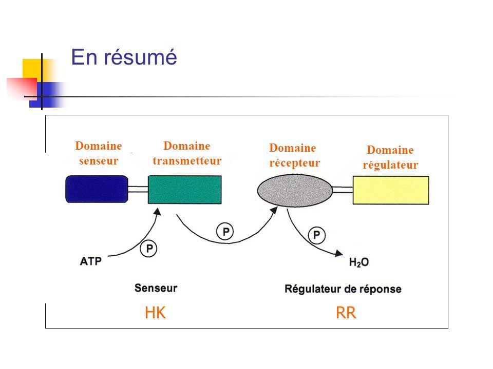 En résumé HK RR Domaine senseur Domaine transmetteur Domaine récepteur