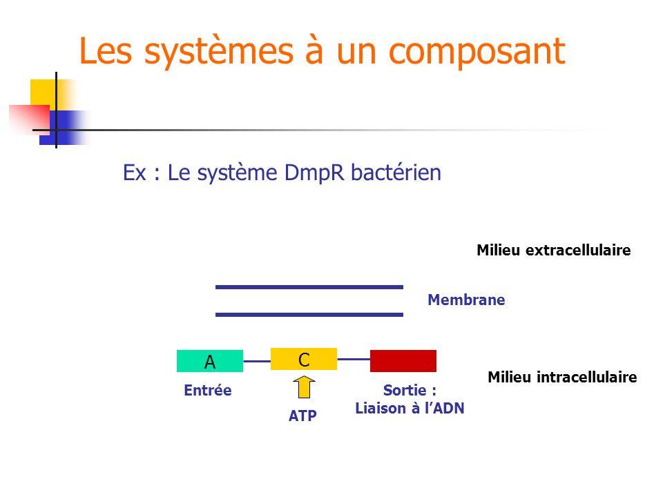 Les systèmes à un composant