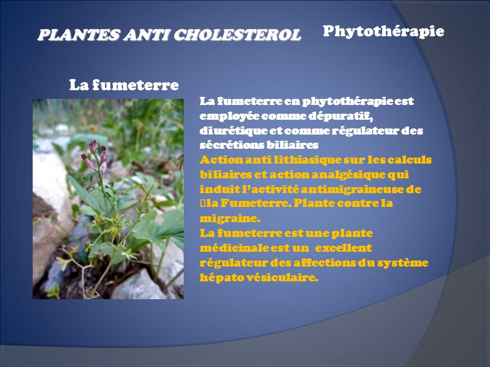 PLANTES ANTI CHOLESTEROL