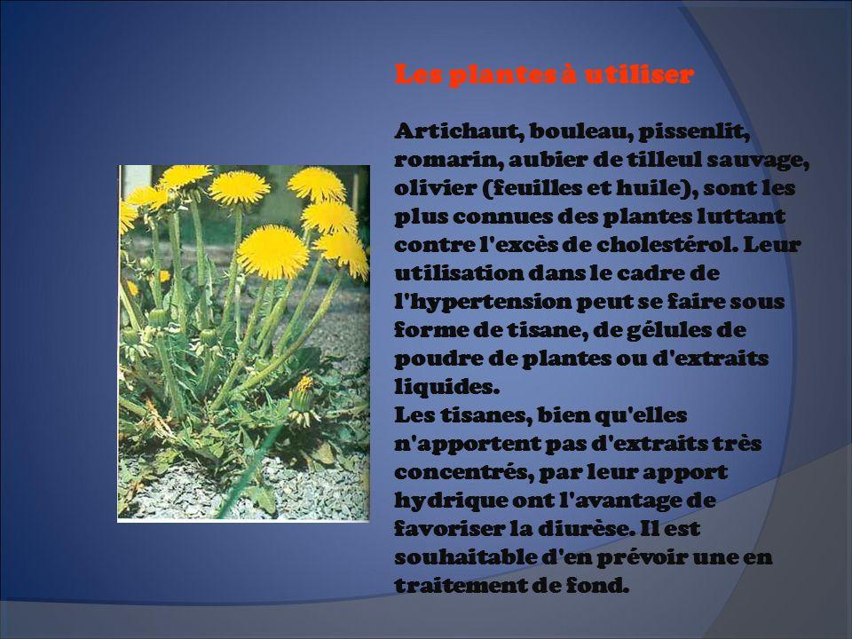 Les plantes à utiliser