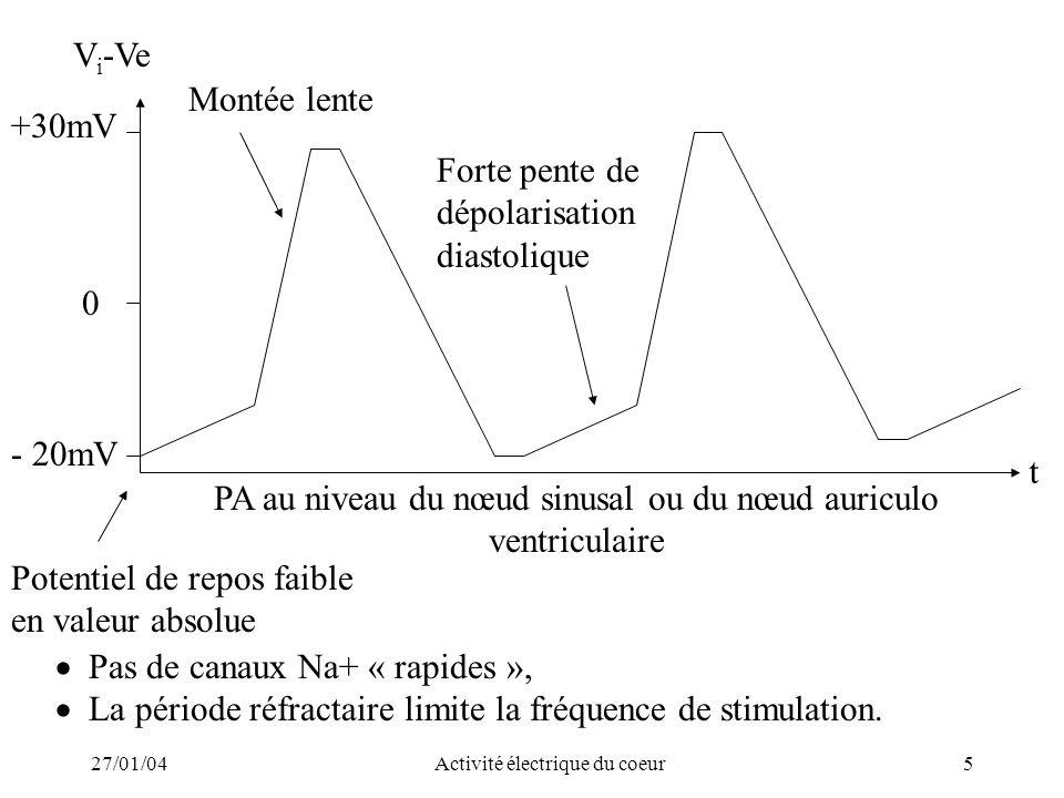 PA au niveau du nœud sinusal ou du nœud auriculo ventriculaire