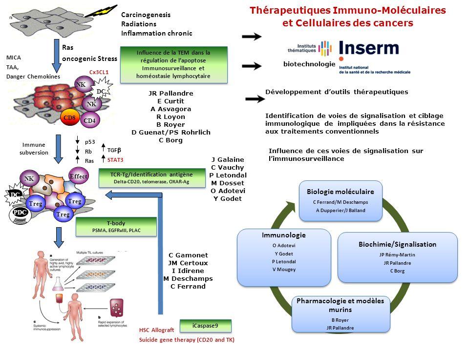 Thérapeutiques Immuno-Moléculaires et Cellulaires des cancers
