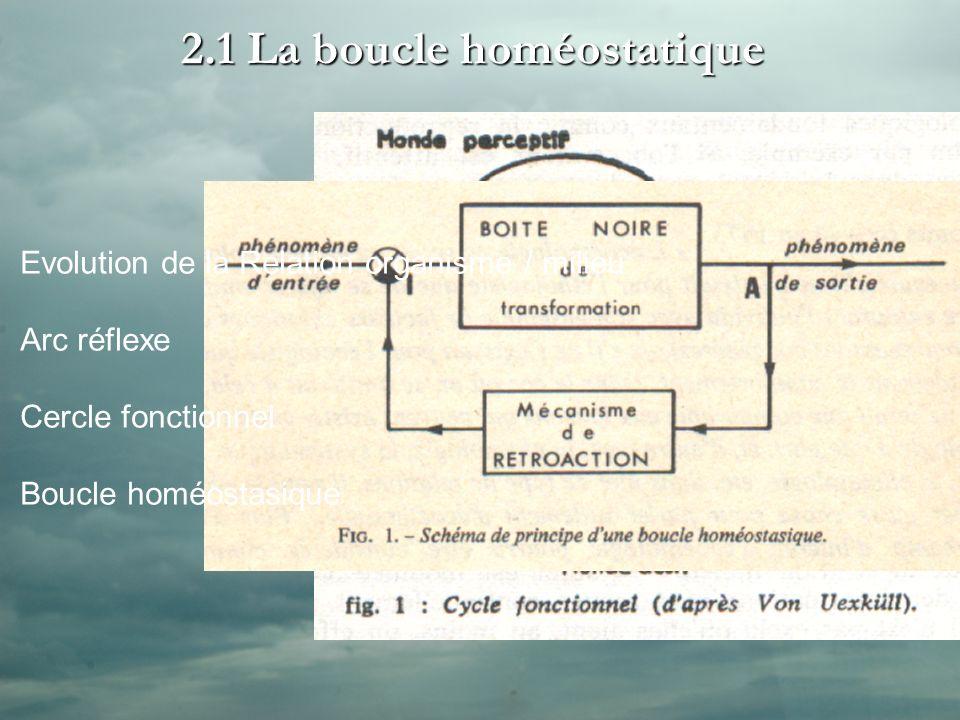 2.1 La boucle homéostatique