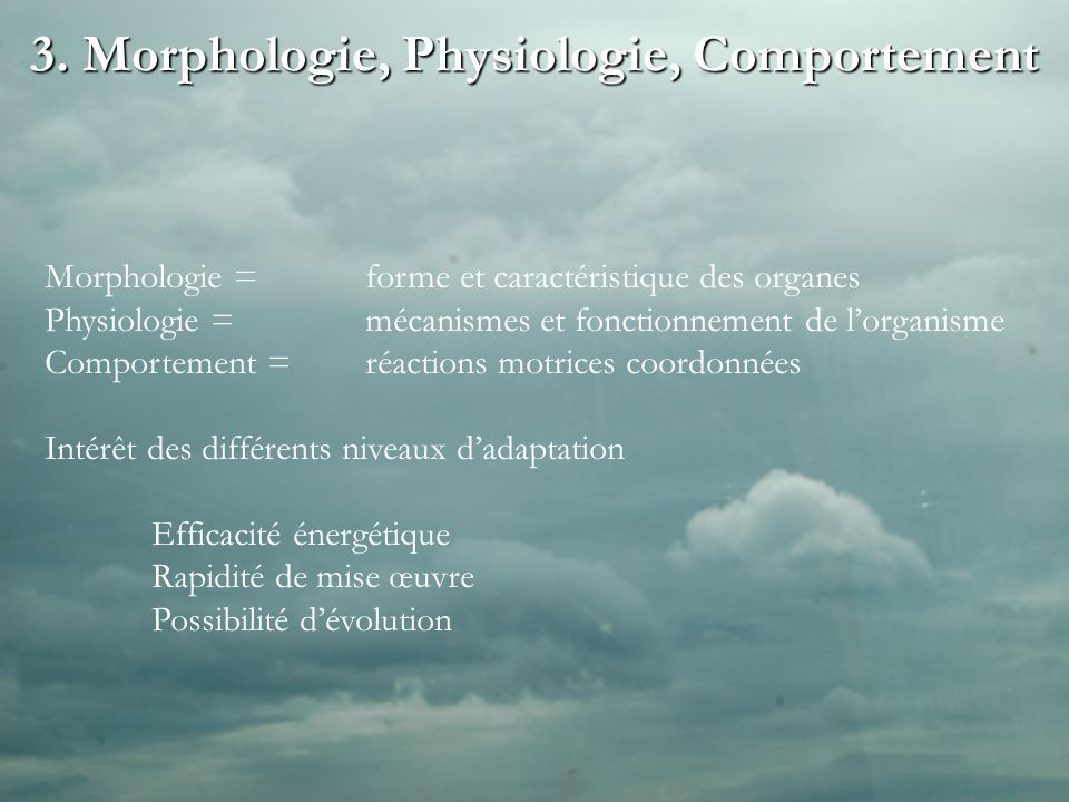 3. Morphologie, Physiologie, Comportement