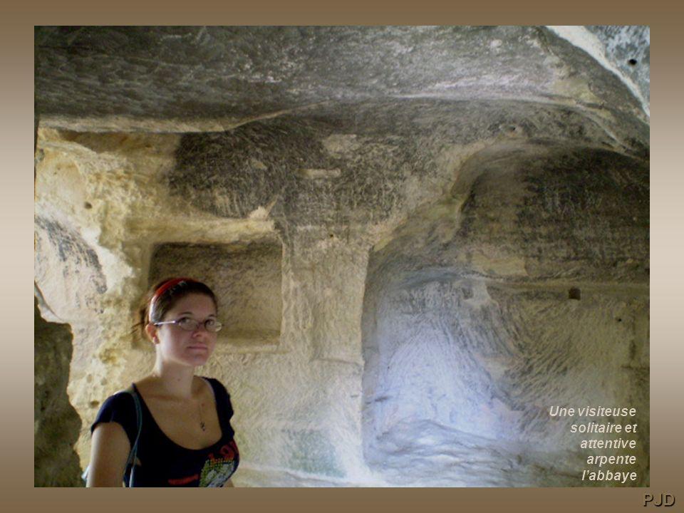 Une visiteuse solitaire et attentive arpente l'abbaye