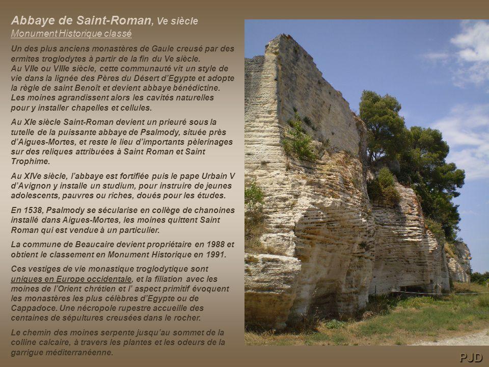 Abbaye de Saint-Roman, Ve siècle Monument Historique classé