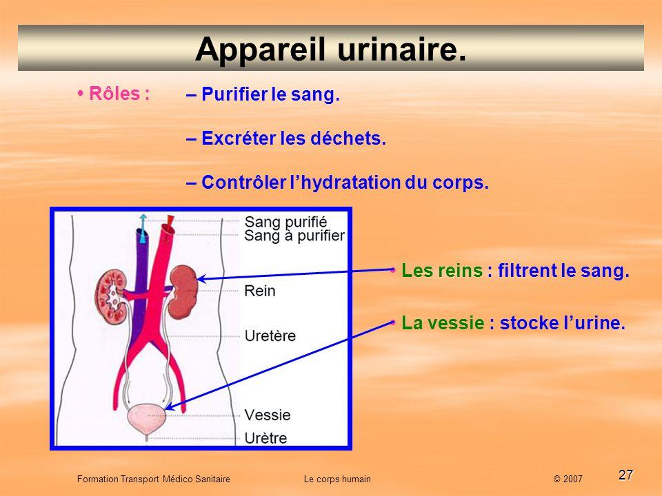 Appareil urinaire. • Rôles : – Purifier le sang.