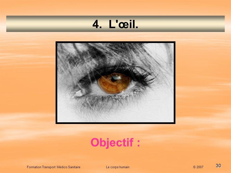 4. L œil. Objectif :