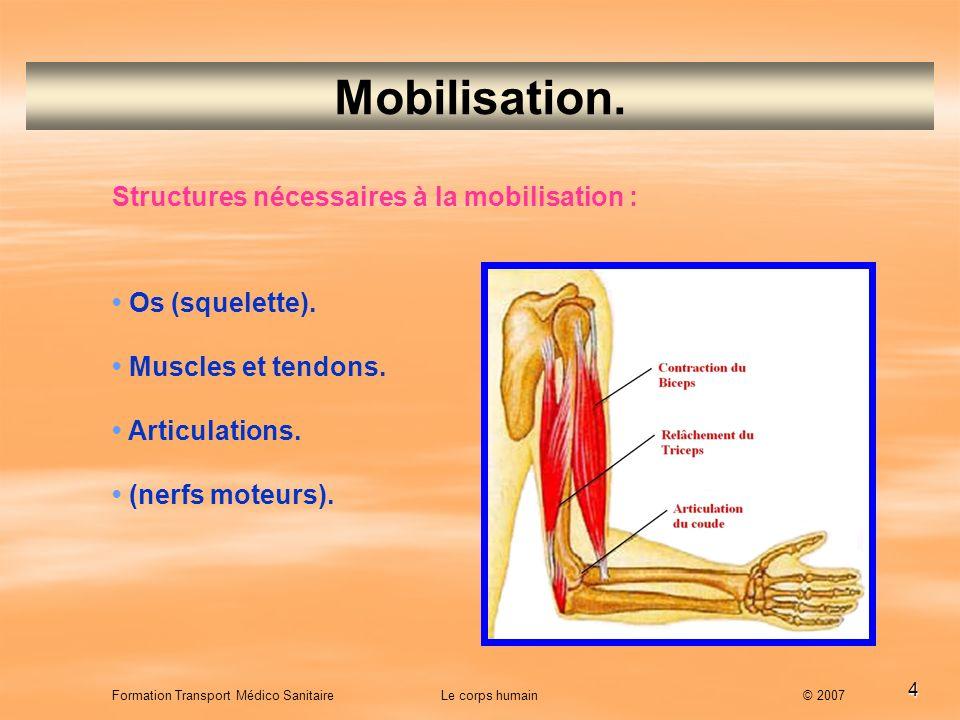 Mobilisation. Structures nécessaires à la mobilisation :
