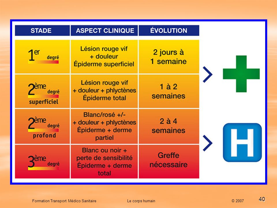 Formation Transport Médico Sanitaire Le corps humain © 2007