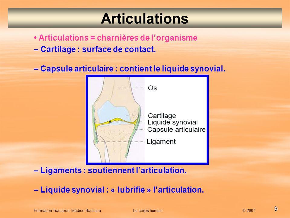 Articulations • Articulations = charnières de l'organisme