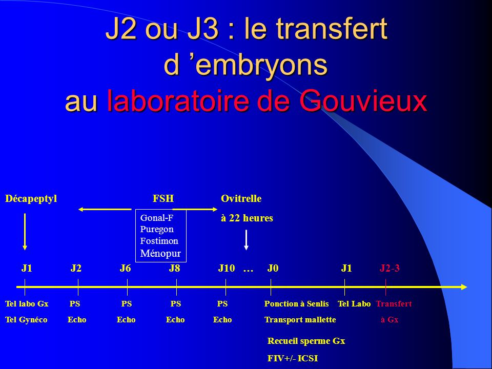 J2 ou J3 : le transfert d 'embryons au laboratoire de Gouvieux