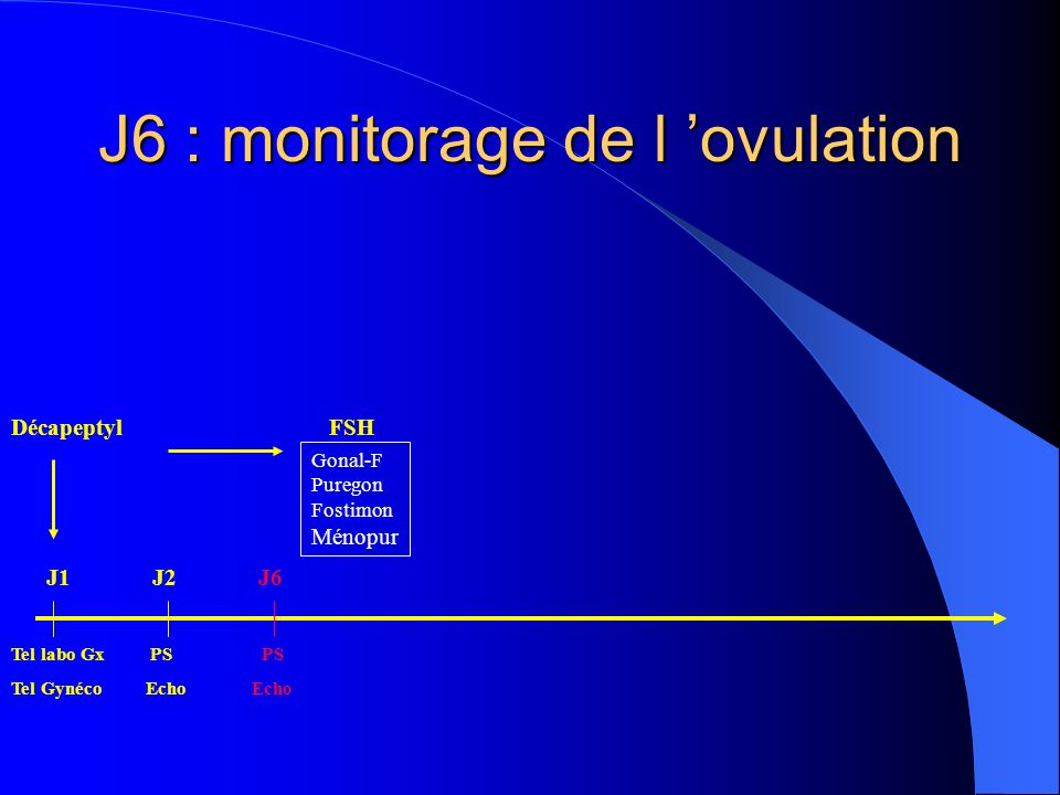 J6 : monitorage de l 'ovulation