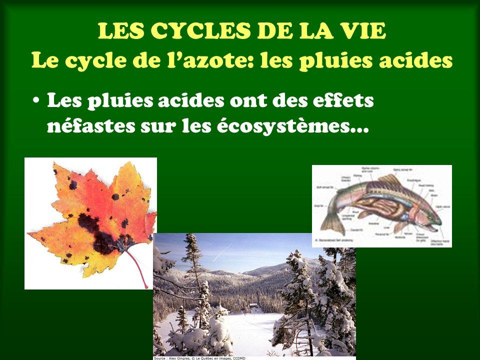 LES CYCLES DE LA VIE Le cycle de l'azote: les pluies acides