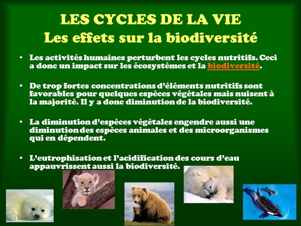LES CYCLES DE LA VIE Les effets sur la biodiversité