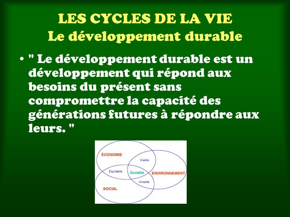 LES CYCLES DE LA VIE Le développement durable